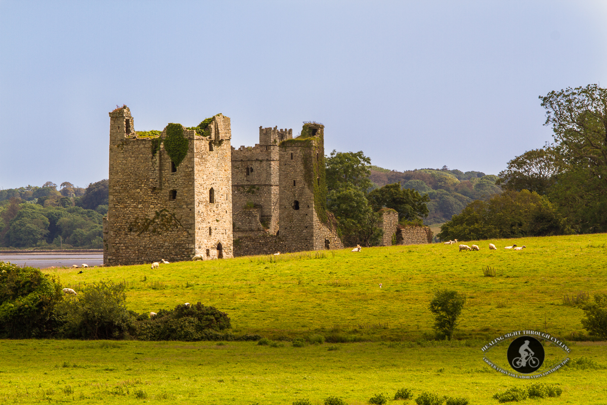 Abbey in Clonmines, Bannow Bay. County Wexford - close