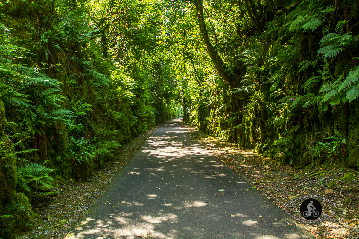 Ballyvoyle pathway - Waterford Greenway
