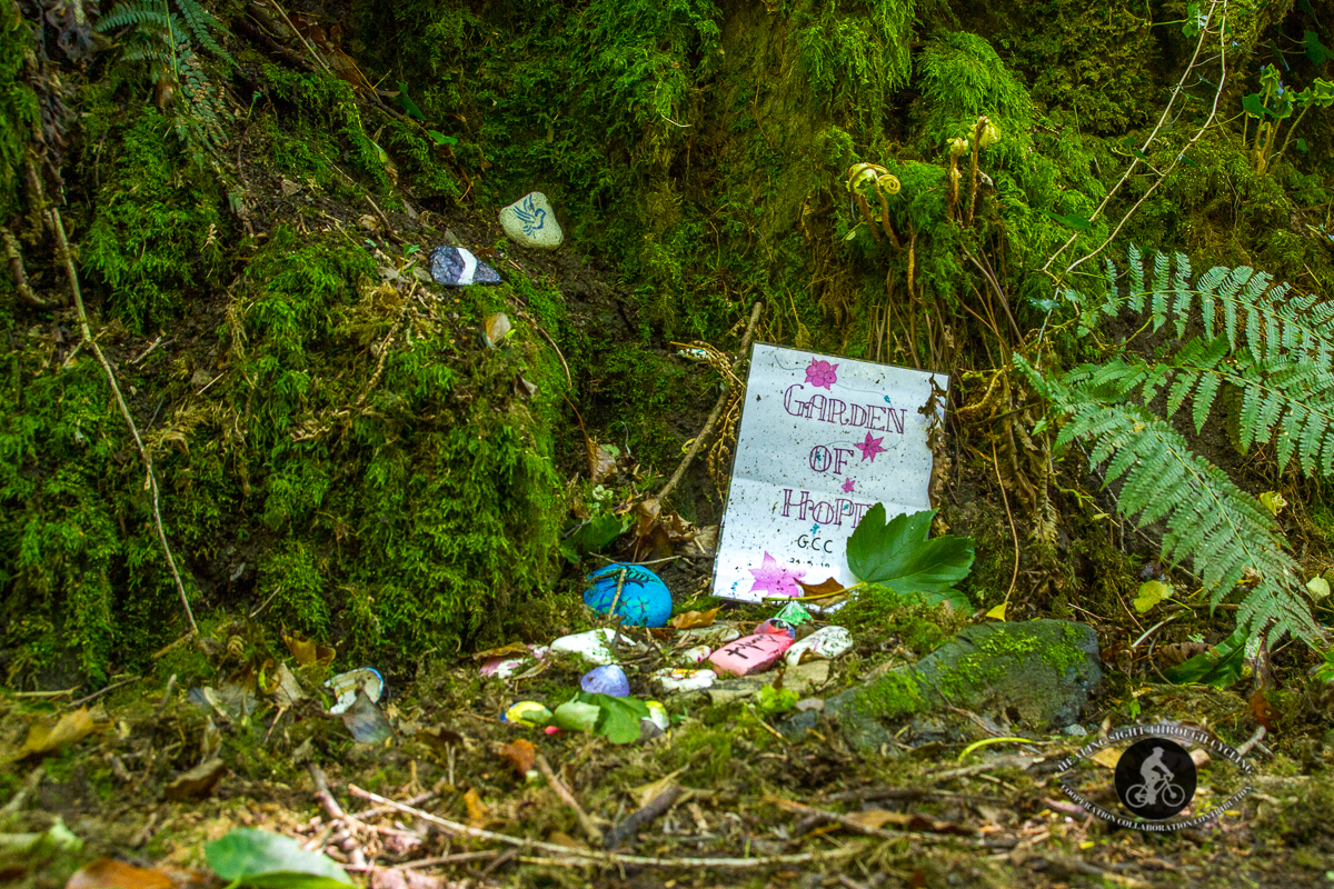 Ballyvoyle pathway - garden of hope - Waterford Greenway