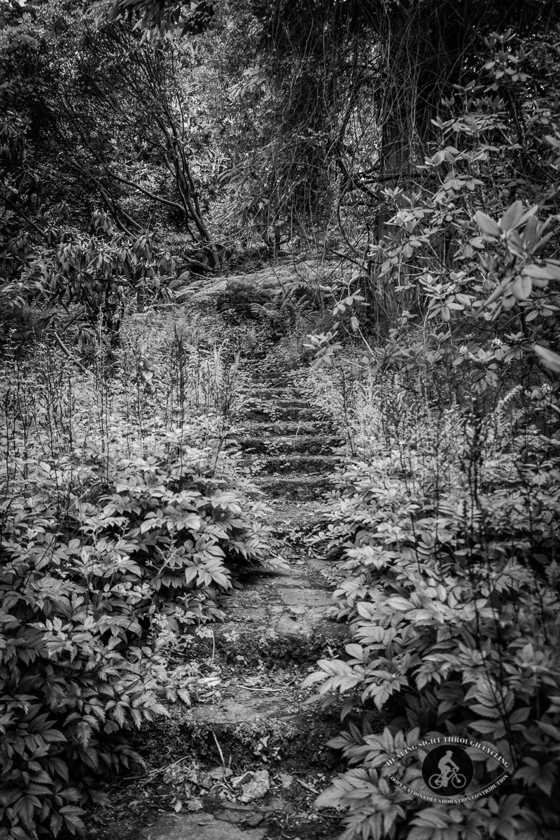 Mount Congreve Gardens - stairs leading up