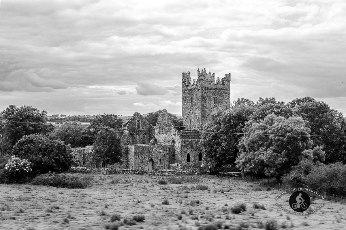 Old ruins on journey from Waterford to Dublin by train - BW
