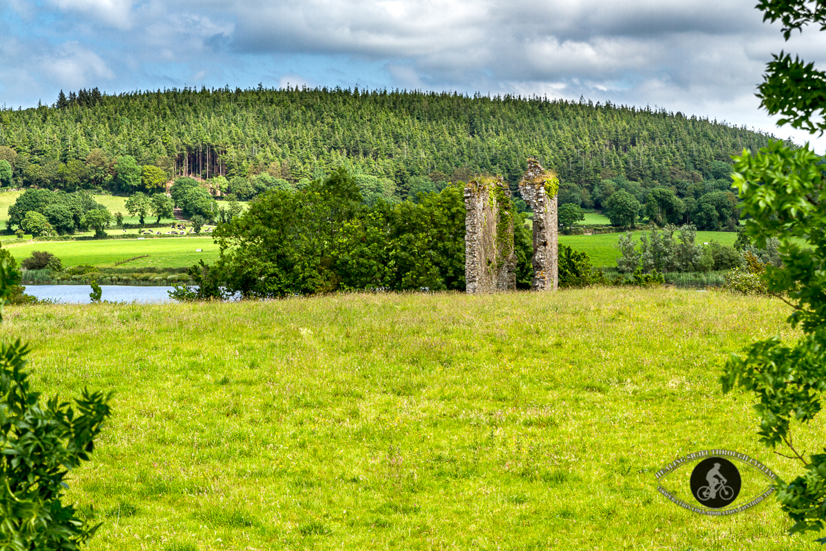 Remains of Kilmeadan Castle - Co Waterford