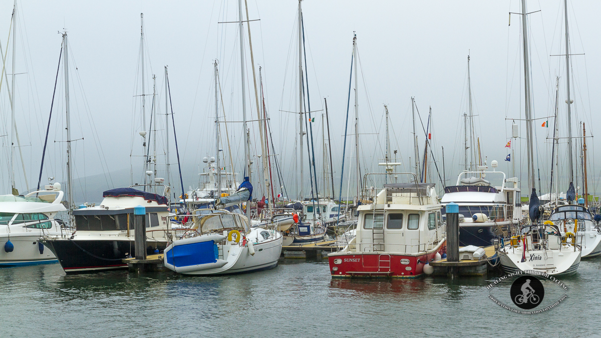 Boats in DIngle Harbour in the fog