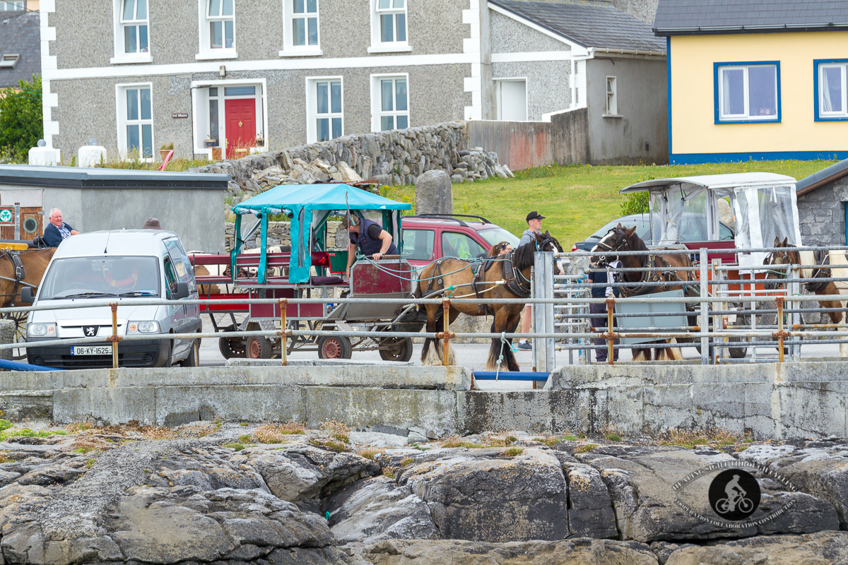 Horses and buggies on Inisheer Harbour