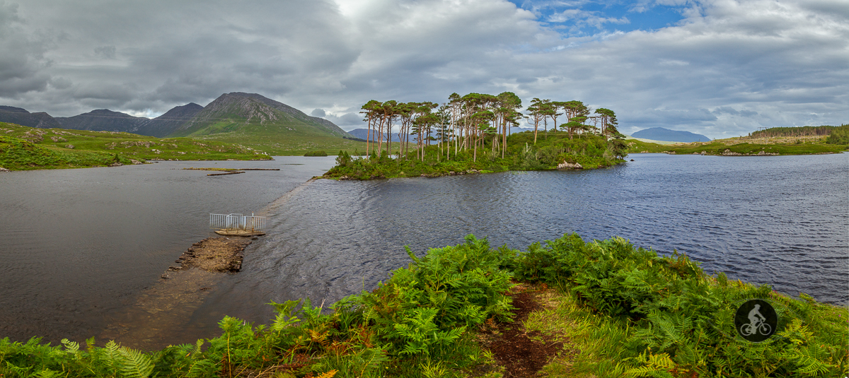 Pines Island Derryclare Lough - County Galway - Pano
