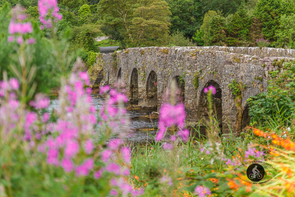 Blurred flowers in front of 7 arch bridge over Lough Feeagh - County Mayo