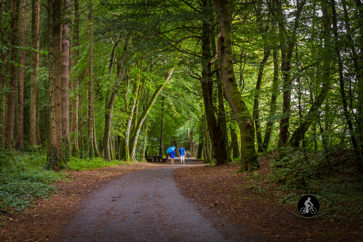 People on Path through the woods to stairs at Beleek Castle County Mayo - 2